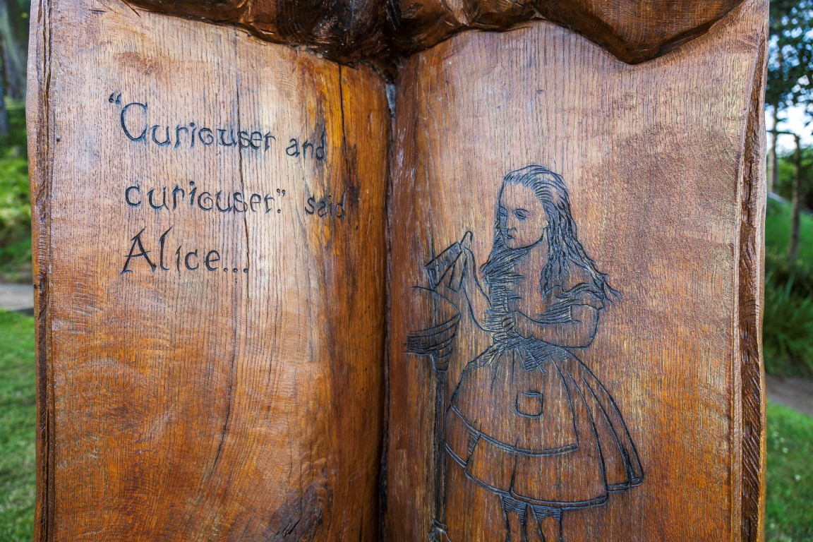 Alice in Wonderland Trail
