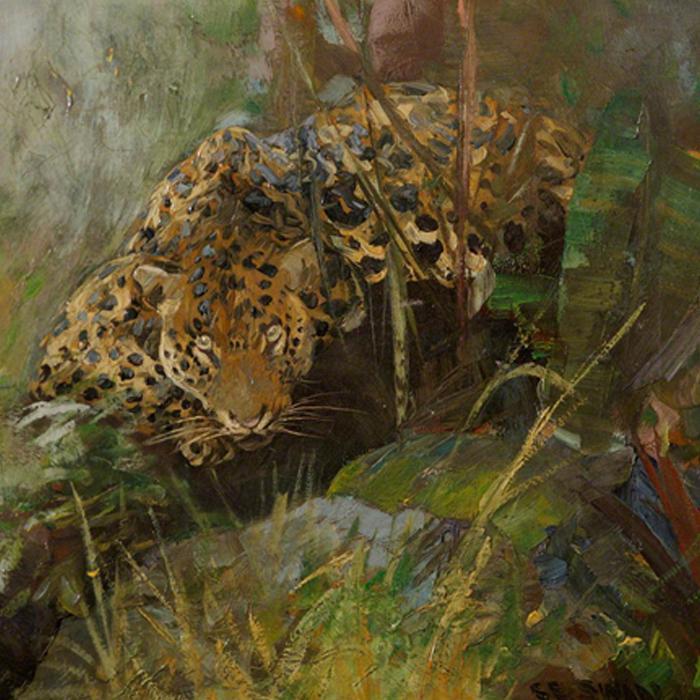 A Leopard by Cuthbert Edmund Swan (1870–1931)