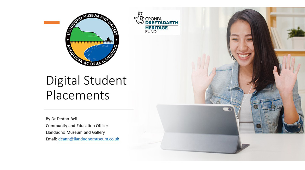 Museums & Heritage Webinar on Digital Student Placements